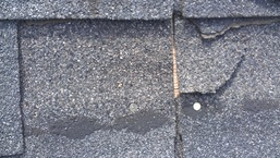 Picture of Missing Granules and Bare Spots more info in our website